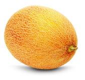 Ripe yellow melon on the white background Stock Photos