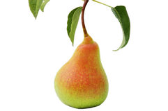 Ripe yellow pear on white background Stock Images