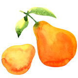 Ripe yellow pear on white background Royalty Free Stock Images