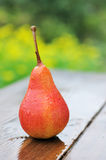Ripe yellow pears Royalty Free Stock Photography