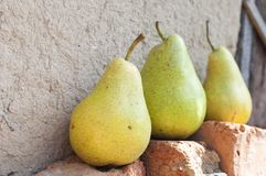 Ripe yellow pears Stock Photos