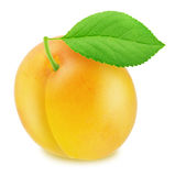 Ripe yellow plum with green leaf. With clipping path Stock Photos
