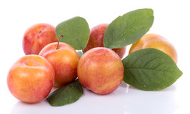 Ripe yellow plums Stock Photos