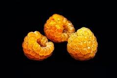 Ripe yellow raspberries Stock Photo