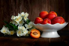 Ripe yellow-red apricots. In a vase and jasmine flowers near on a wooden background royalty free stock photos