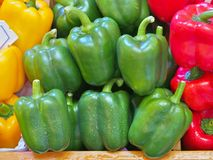 Ripe Yellow, Red and Green Peppers in wooden box. Ripe Yellow, Red and Green Peppers in wooden box at vegetables market stock photos