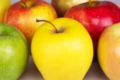 Ripe yellow, red, green, pink apple. Ripe, yellow, red, green apple, pink with a sprig Stock Images