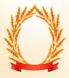 Ripe yellow wheat ears with red ribbons. Vector background Royalty Free Stock Image