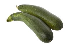 Ripe zucchini or courgette Stock Photography