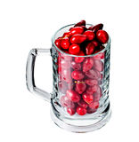 Riped dogwood berries in beer mug. Royalty Free Stock Photography