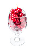 Riped dogwood berries in wine glass. Stock Image