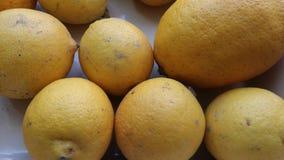 Riped lemons. Yellow homegrown lemons in Spain Stock Image