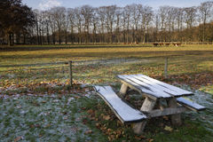 Riped picnic bench Royalty Free Stock Images