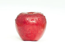 Riped red apple Stock Images