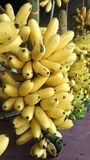 Ripen banana bunch Royalty Free Stock Photos