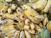Ripen bananas Royalty Free Stock Photos