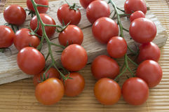Ripen cherry tomatoes Stock Photos