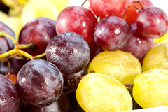 Ripen grapes Stock Photos