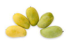 Ripen mango form green to yellow Royalty Free Stock Images
