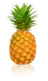 Ripen Pineapple. Isolated over white white background Stock Image
