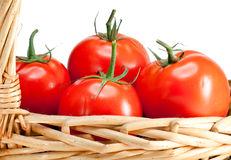 The ripened tomatoes in a wattled basket.Still-life on a white background Stock Images