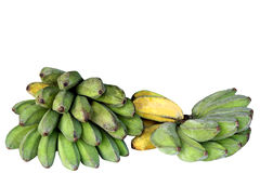Ripening bananas Stock Photo