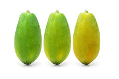 Ripening papaya fruits Royalty Free Stock Photos
