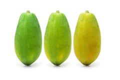Ripening papaya fruits royalty free stock photos