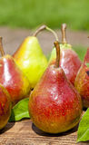 Ripening Pears  Royalty Free Stock Images
