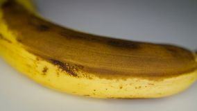 Ripening progress of banana. Timelapse. Ripening progress of banana long shot. Peeling and cutting fruit into pieces and put in a bowl stock footage