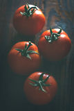 Ripening Tomatoes Closeup Stock Photography