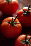 Ripening Tomatoes Closeup Stock Images
