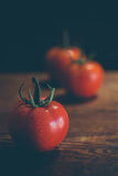 Ripening Tomatoes Closeup Royalty Free Stock Photography