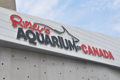 Ripley's Aquarium of Canada Royalty Free Stock Images