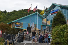 Ripley`s Aquarium of the Smokies in Gatlinburg, Tennessee. In the USA Royalty Free Stock Photo