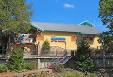 Ripleys akvarium av Smokiesen i Gatlinburg, tio Royaltyfri Fotografi