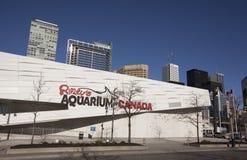 Ripleys akvarium i toronto Royaltyfria Bilder