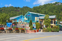 Ripleys Aquarium of the Smokies in Gatlinburg, Ten Royalty Free Stock Images