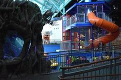Ripleys Aquarium of the Smokies in Gatlinburg, Tennessee Royalty Free Stock Images