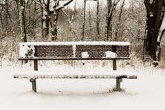 Riposando nell'inverno Immagine Stock