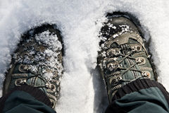 Riposando nella neve Immagine Stock Libera da Diritti