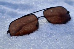 Riposando nella neve immagine stock