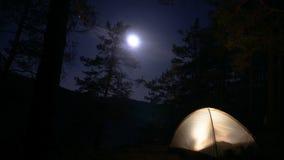 Riposi in un'area della foresta della montagna in natura alla notte dalla luce della luna timelapse nel legno con una tenda video d archivio