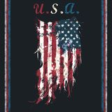 Ripped american flag. Textile graphic illustration art print resource Royalty Free Stock Images