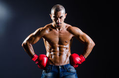 The ripped boxer in sports concept Royalty Free Stock Images