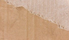 Ripped Brown Cardboard. Stock Image