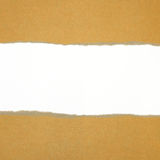 Ripped in brown paper on white Royalty Free Stock Photography