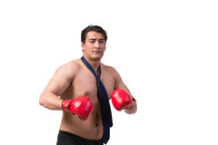 The ripped businessman with boxing gloves isolated on white Royalty Free Stock Image