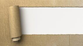 Ripped cardboard Stock Image