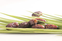 Ripped dates on palm leaves Stock Photos